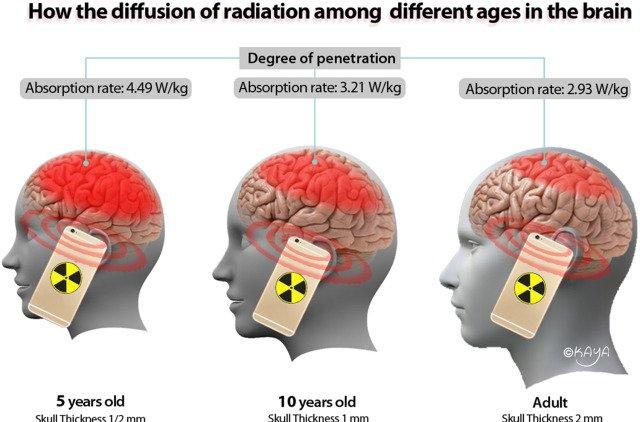 Απορρόφηση ακτινοβολίας κινητών